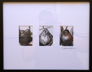 pear studies, charcoal drawings of pears