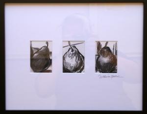 pear studies, charcoal drawings of pears
